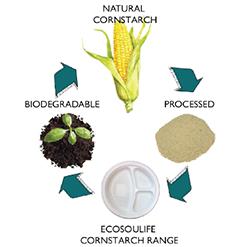 cornstarch-lifecycle